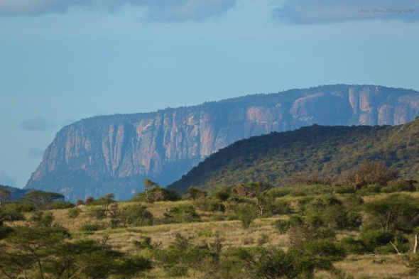 Samburu savanna