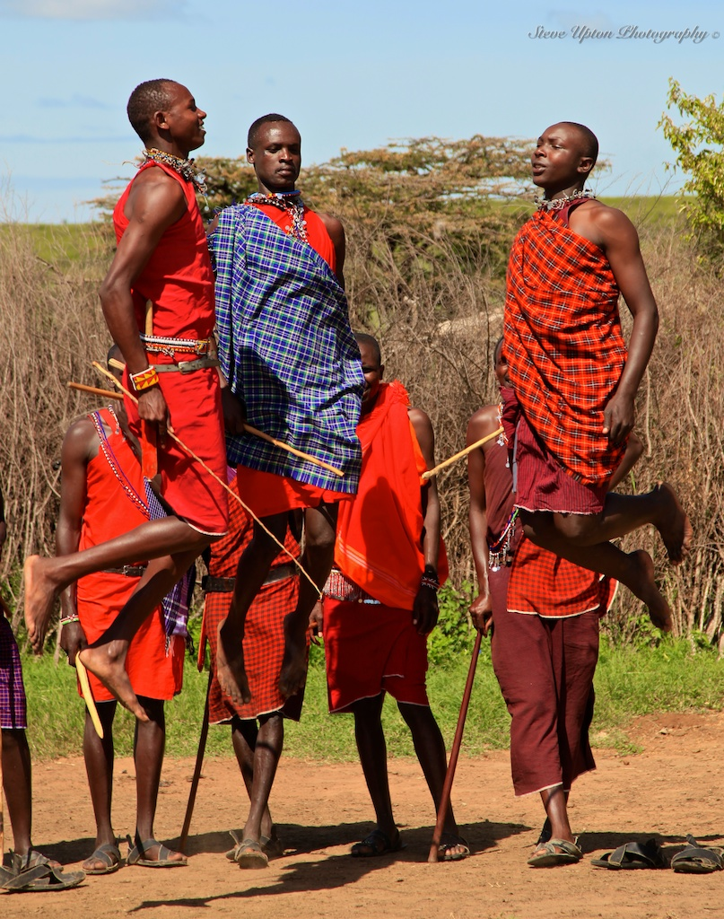 Masai warriors jumping...